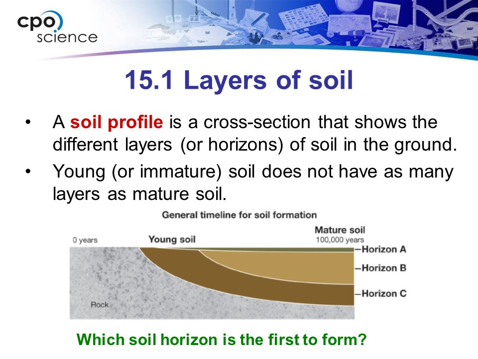 15.1 Layers of soil A soil profile is a cross-section that shows the different layers (or horizons) of soil in the ground.