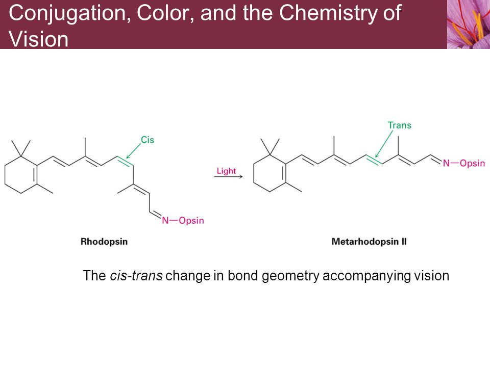The cis-trans change in bond geometry accompanying vision Conjugation, Color, and the Chemistry of Vision