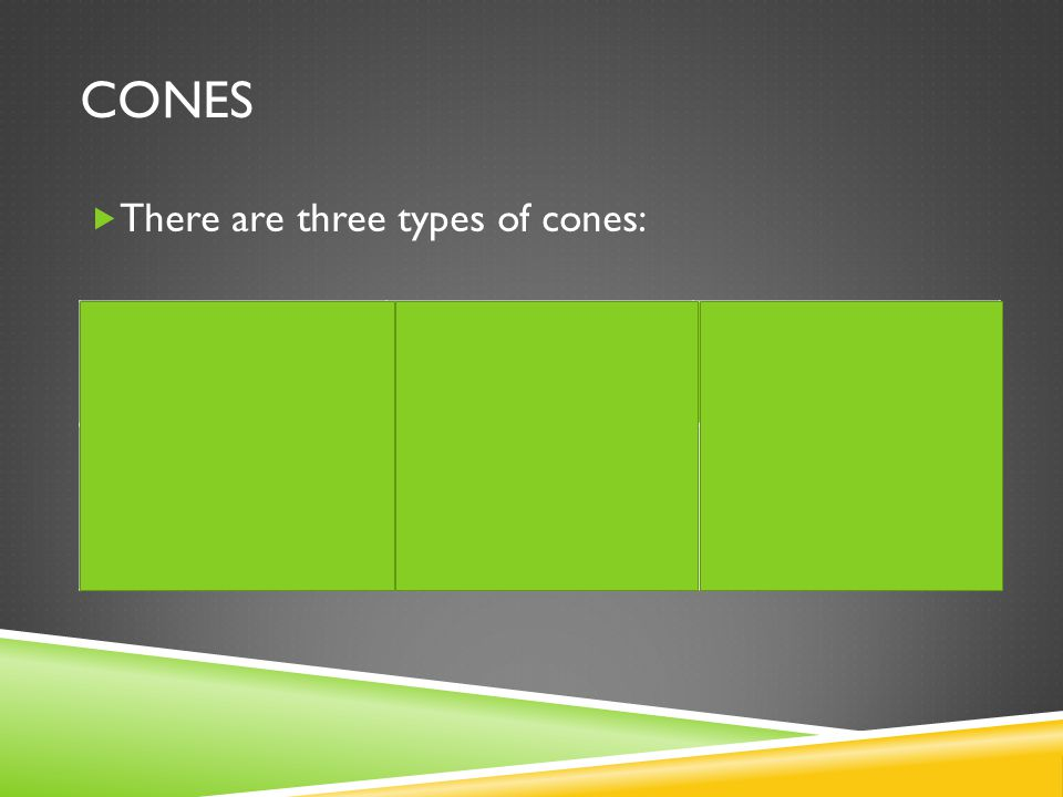 CONES  There are three types of cones: Red ConesGreen ConesBlue Cones Detects long wavelengths (i.e.