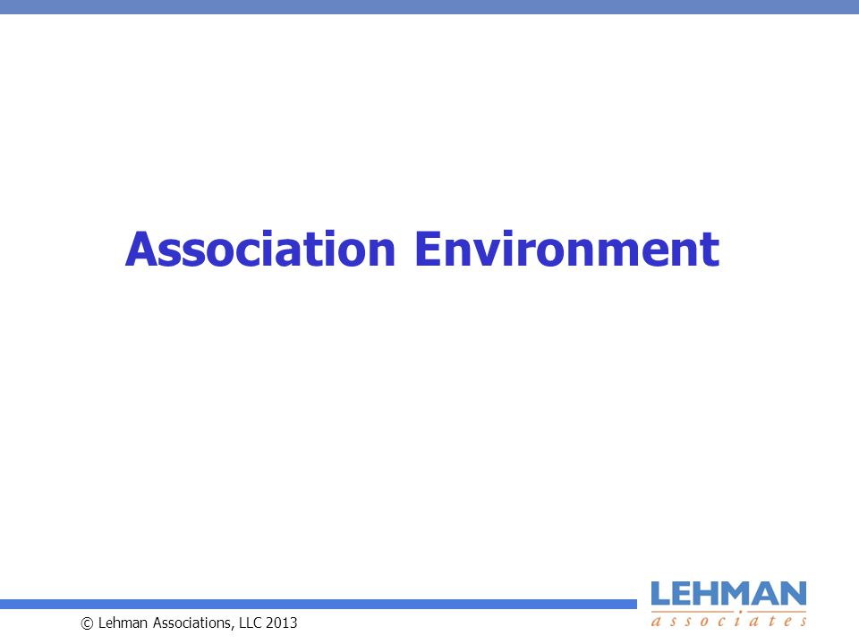 © Lehman Associations, LLC 2013 Association Environment