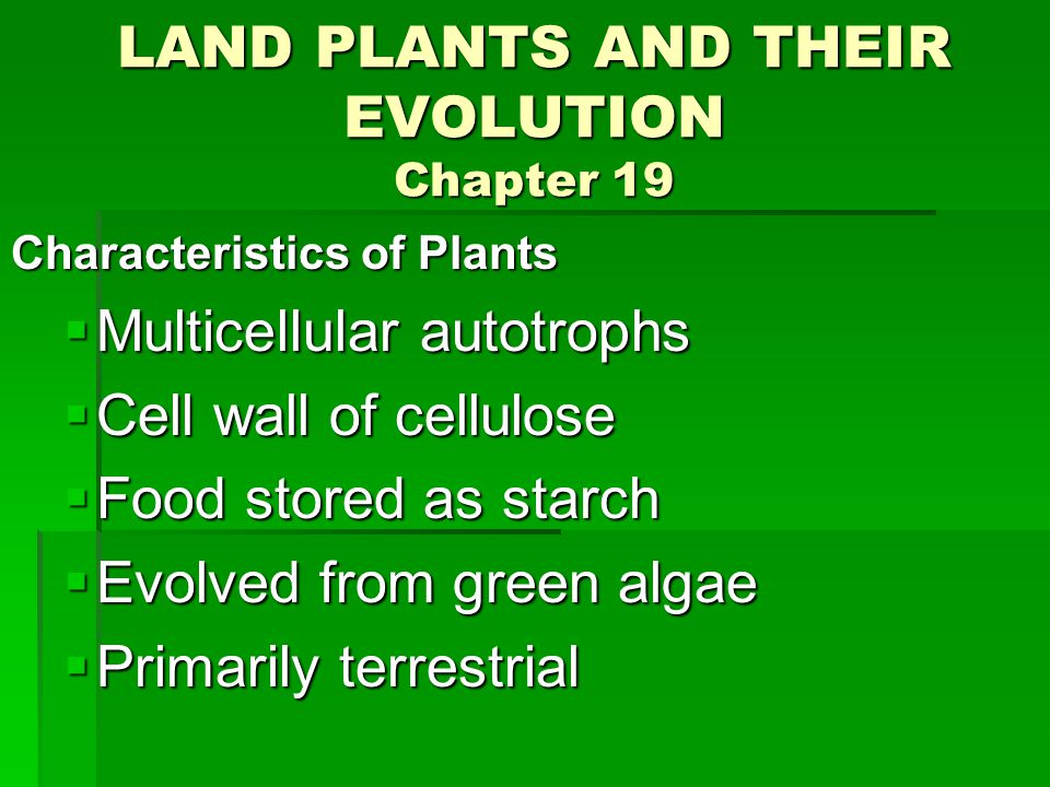 LAND PLANTS AND THEIR EVOLUTION Chapter 19 Characteristics of Plants  Multicellular autotrophs  Cell wall of cellulose  Food stored as starch  Evolved from green algae  Primarily terrestrial