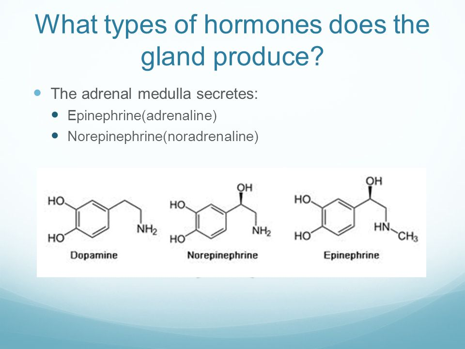What types of hormones does the gland produce.