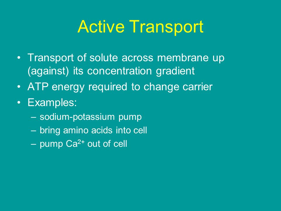 Active Transport Transport of solute across membrane up (against) its concentration gradient ATP energy required to change carrier Examples: –sodium-potassium pump –bring amino acids into cell –pump Ca 2+ out of cell