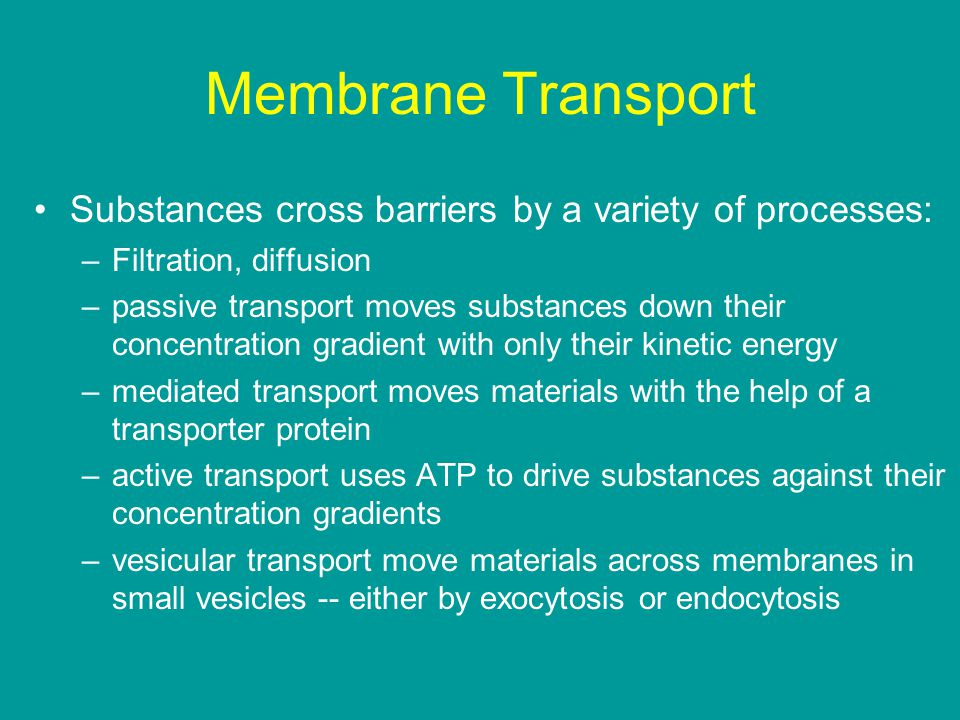 Membrane Transport Substances cross barriers by a variety of processes: –Filtration, diffusion –passive transport moves substances down their concentration gradient with only their kinetic energy –mediated transport moves materials with the help of a transporter protein –active transport uses ATP to drive substances against their concentration gradients –vesicular transport move materials across membranes in small vesicles -- either by exocytosis or endocytosis