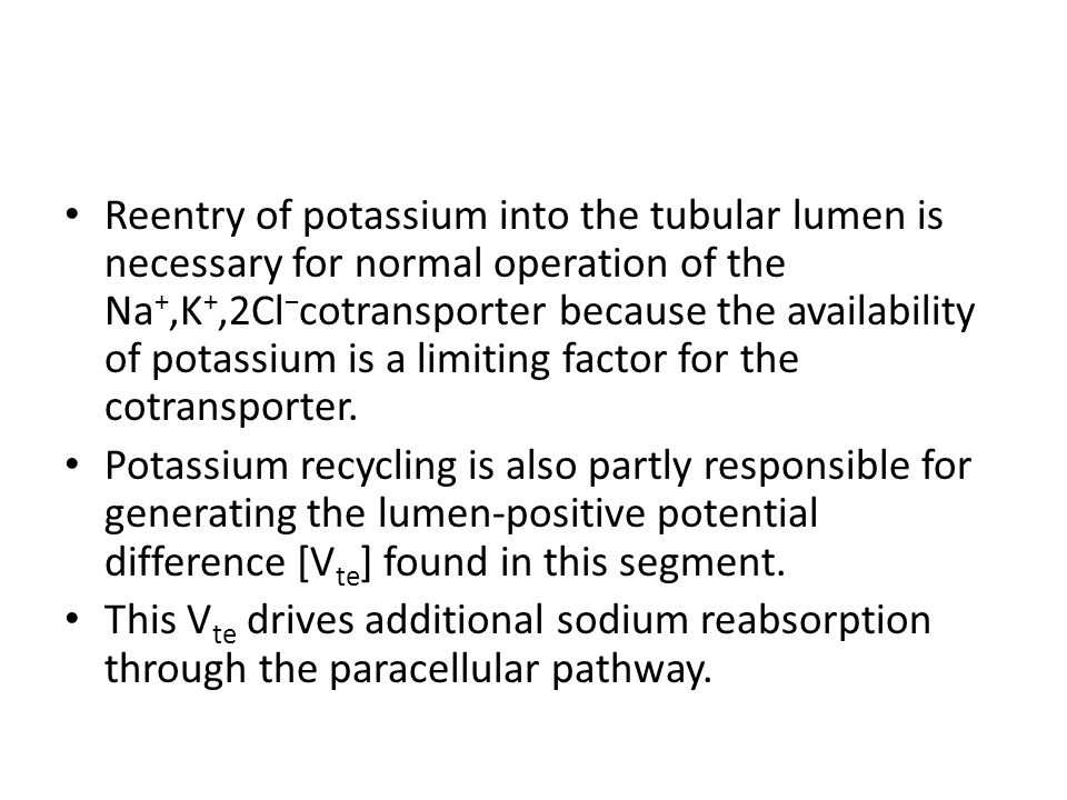 Reentry of potassium into the tubular lumen is necessary for normal operation of the Na +,K +,2Cl − cotransporter because the availability of potassium is a limiting factor for the cotransporter.