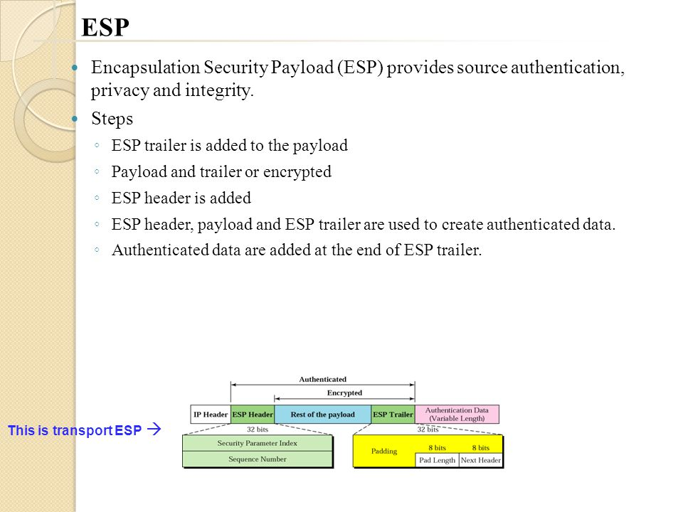 ESP Encapsulation Security Payload (ESP) provides source authentication, privacy and integrity.