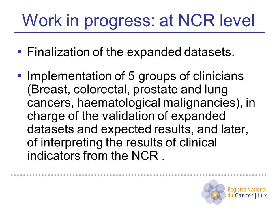 Work in progress: at NCR level  Finalization of the expanded datasets.