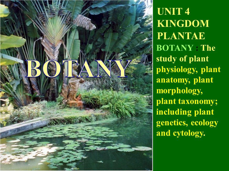 Unit 4 Kingdom Plantae Botany The Study Of Plant Physiology Plant
