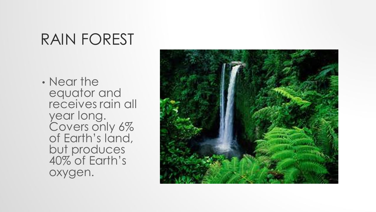 RAIN FOREST Near the equator and receives rain all year long.