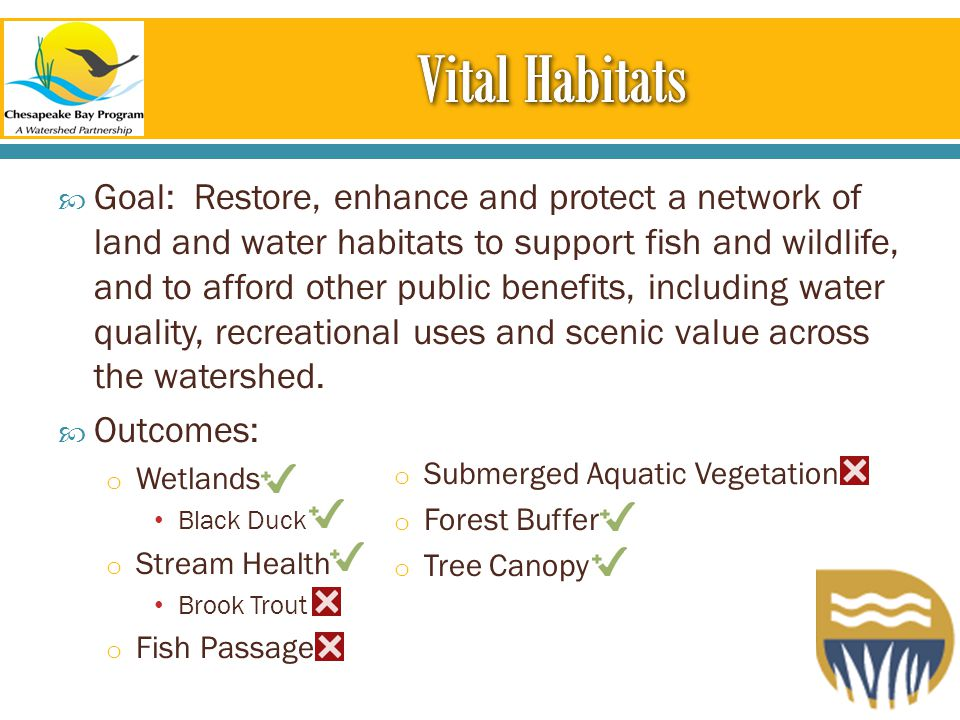  Goal: Restore, enhance and protect a network of land and water habitats to support fish and wildlife, and to afford other public benefits, including water quality, recreational uses and scenic value across the watershed.