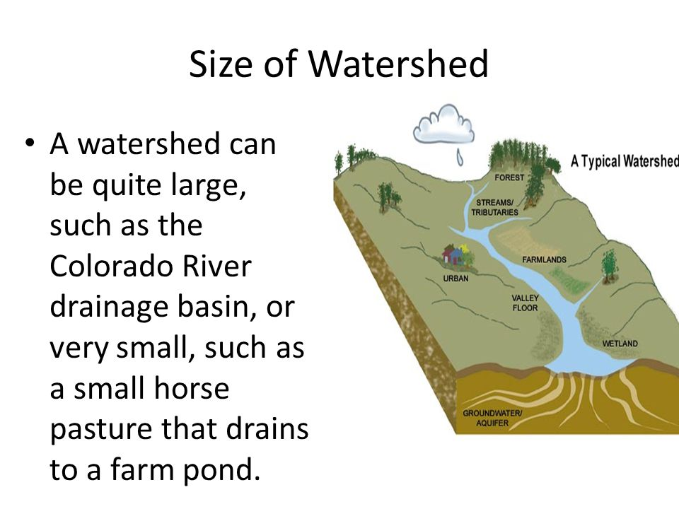 Size of Watershed A watershed can be quite large, such as the Colorado River drainage basin, or very small, such as a small horse pasture that drains to a farm pond.