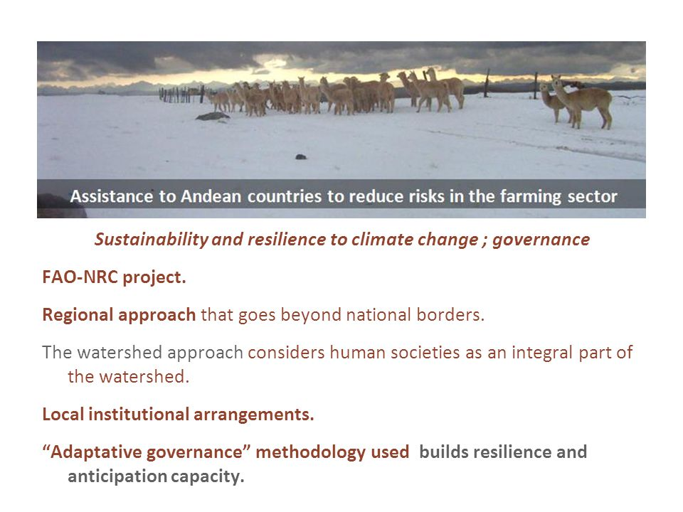 Sustainability and resilience to climate change ; governance FAO-NRC project.