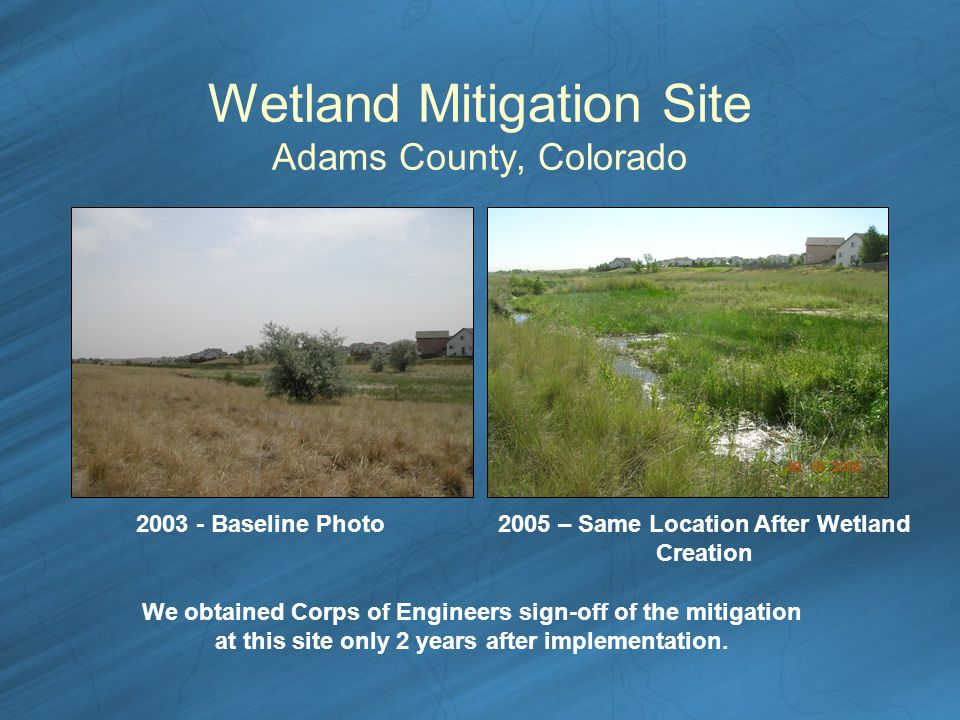 Wetland Mitigation Site Adams County, Colorado Baseline Photo2005 – Same Location After Wetland Creation We obtained Corps of Engineers sign-off of the mitigation at this site only 2 years after implementation.