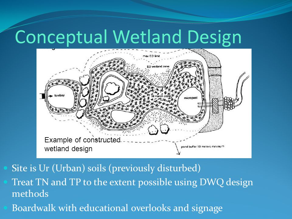 Conceptual Wetland Design Site is Ur (Urban) soils (previously disturbed) Treat TN and TP to the extent possible using DWQ design methods Boardwalk with educational overlooks and signage Example of constructed wetland design