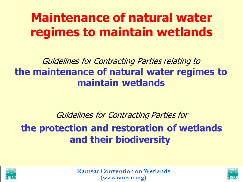 Ramsar Convention on Wetlands (  Guidelines for Contracting Parties relating to reducing the impact of water development projects on wetlands Minimizing the impacts of land use and development projects on wetlands and their biodiversity Guidelines to assist Contracting Parties to minimize the impacts of land use and development projects on wetlands and their biodiversity