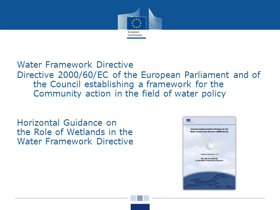 Water Framework Directive Directive 2000/60/EC of the European Parliament and of the Council establishing a framework for the Community action in the field of water policy Horizontal Guidance on the Role of Wetlands in the Water Framework Directive
