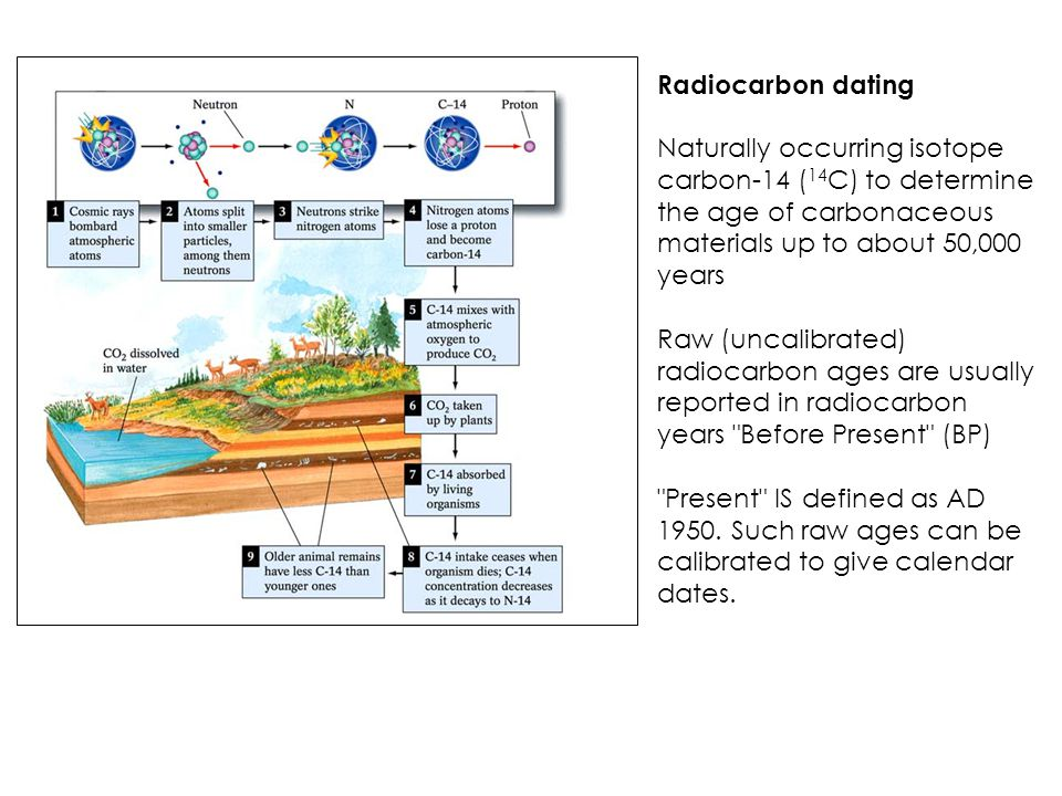 Radiocarbon dating definition