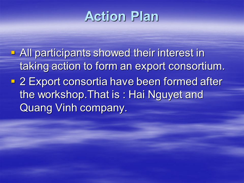 Action Plan  All participants showed their interest in taking action to form an export consortium.