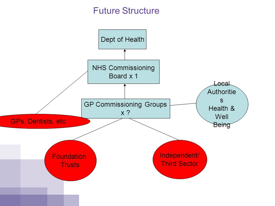 Future Structure Dept of Health NHS Commissioning Board x 1 GP Commissioning Groups x .