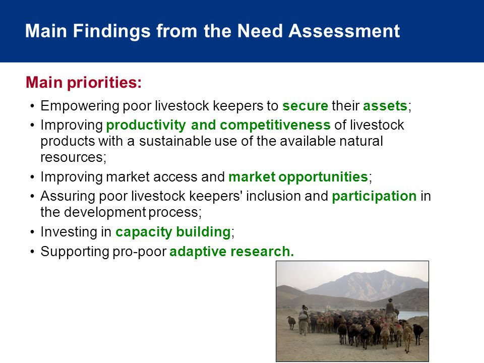 Main Findings from the Need Assessment Empowering poor livestock keepers to secure their assets; Improving productivity and competitiveness of livestock products with a sustainable use of the available natural resources; Improving market access and market opportunities; Assuring poor livestock keepers inclusion and participation in the development process; Investing in capacity building; Supporting pro-poor adaptive research.