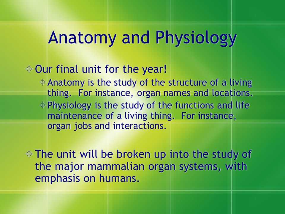 Human Anatomy and Physiology 1.Pick up the handout. 2.You do have ...
