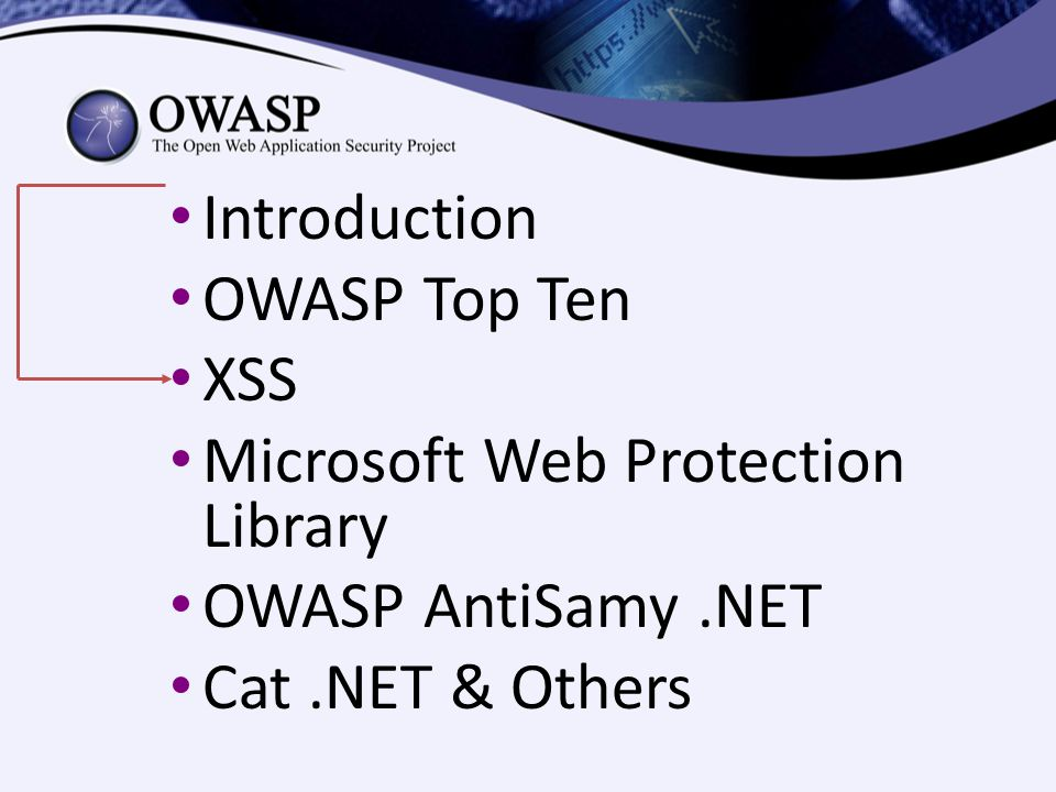 Introduction OWASP Top Ten XSS Microsoft Web Protection Library OWASP AntiSamy.NET Cat.NET & Others