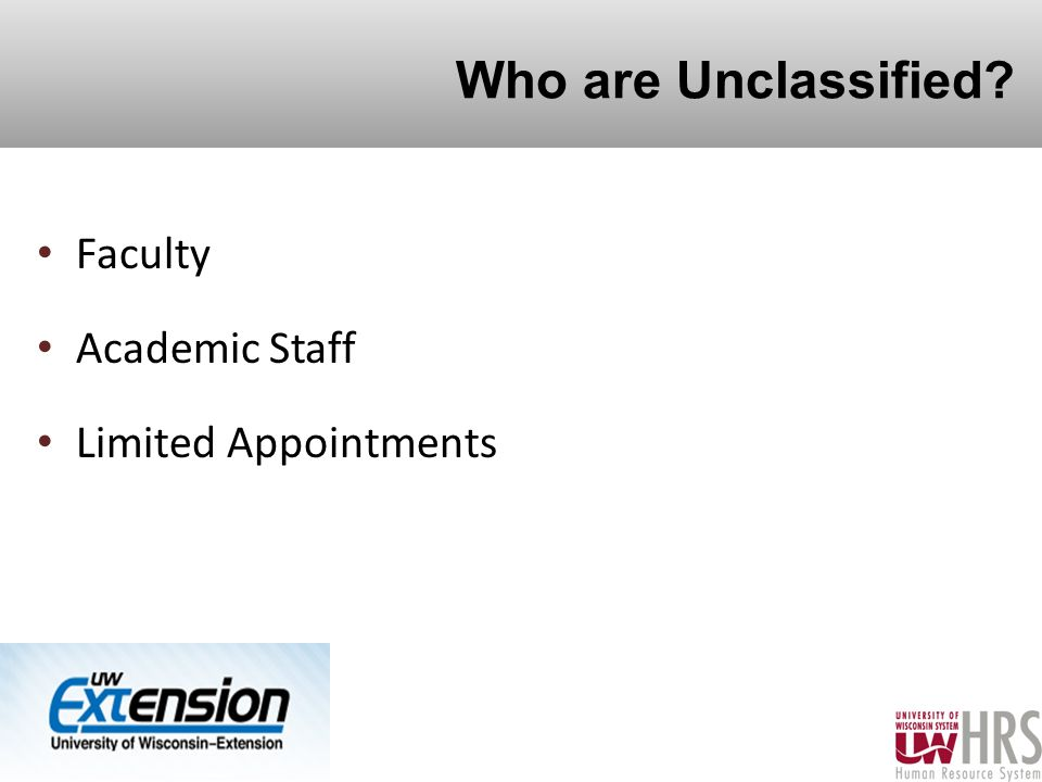 Who are Unclassified Faculty Academic Staff Limited Appointments 3