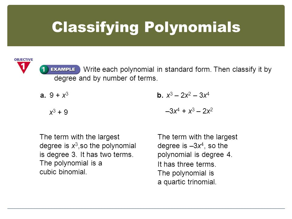 6 1 Polynomial Functions Objectives Exploring Polynomial Functions