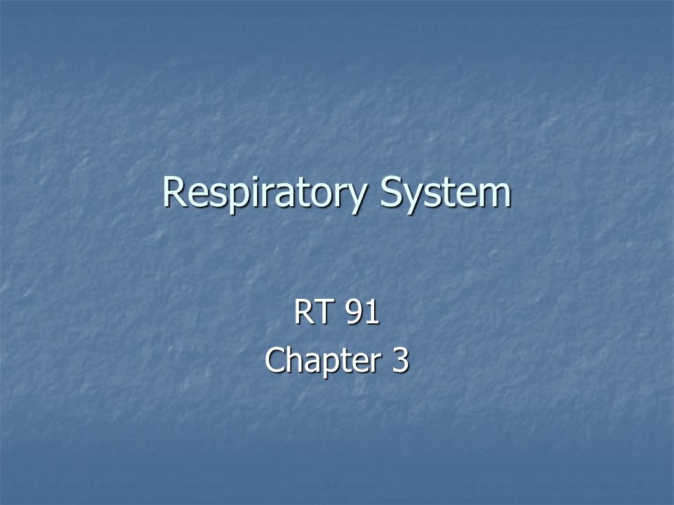 Respiratory System RT 91 Chapter 3
