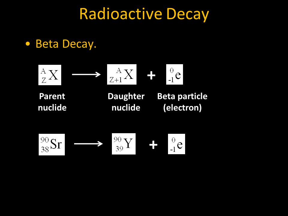 Radioactive Decay Beta Decay. + Parent nuclide Daughter nuclide Beta particle (electron) +