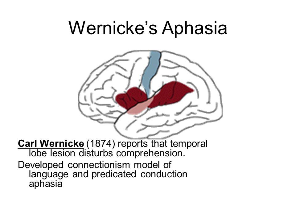wernickes aphasia lobe