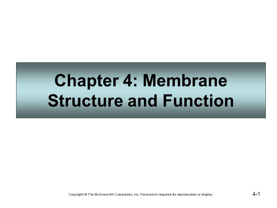 4-1 Chapter 4: Membrane Structure and Function
