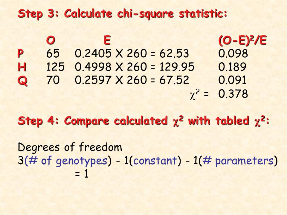 Step 3: Calculate chi-square statistic: OE(O-E) 2 /E P P X 260 = H H X 260 = Q Q X 260 =  2 =0.378 Step 4: Compare calculated  2 with tabled  2 : Degrees of freedom 3(# of genotypes) - 1(constant) - 1(# parameters) = 1