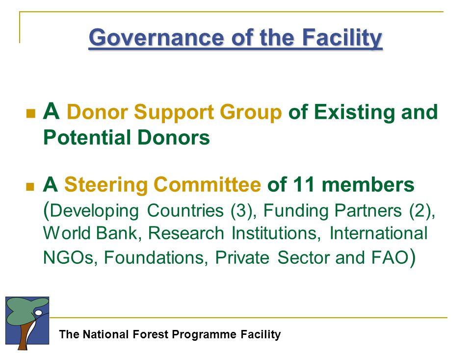 The National Forest Programme Facility A Donor Support Group of Existing and Potential Donors A Steering Committee of 11 members ( Developing Countries (3), Funding Partners (2), World Bank, Research Institutions, International NGOs, Foundations, Private Sector and FAO ) Governance of the Facility