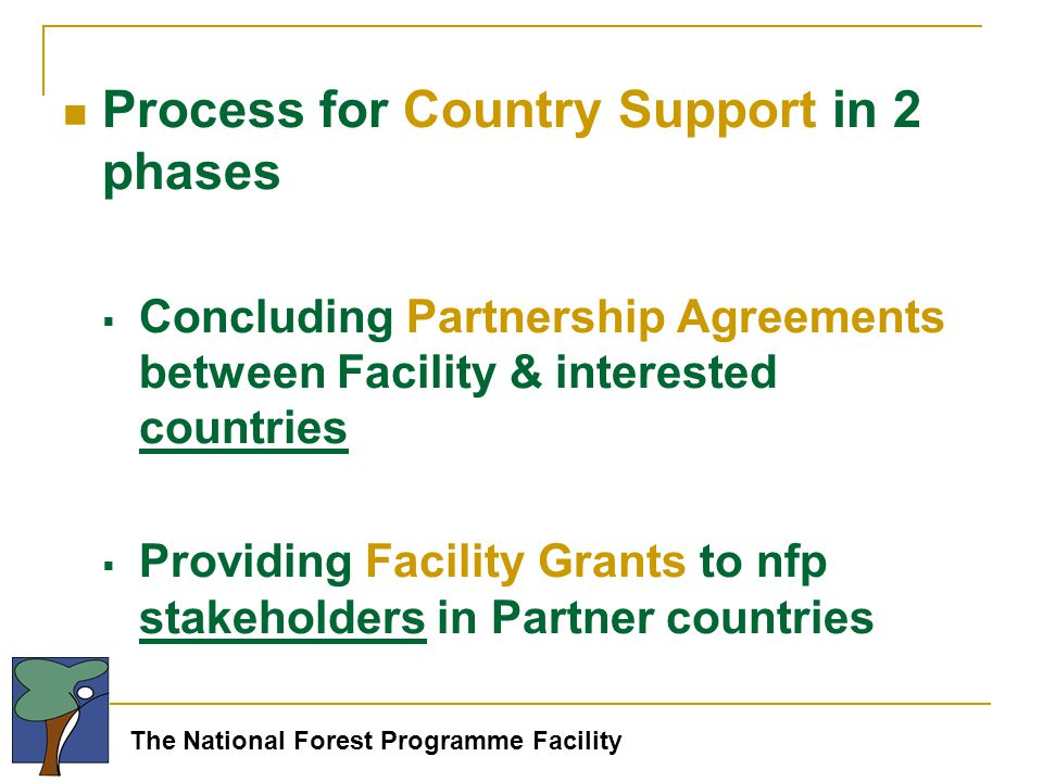 The National Forest Programme Facility Process for Country Support in 2 phases  Concluding Partnership Agreements between Facility & interested countries  Providing Facility Grants to nfp stakeholders in Partner countries