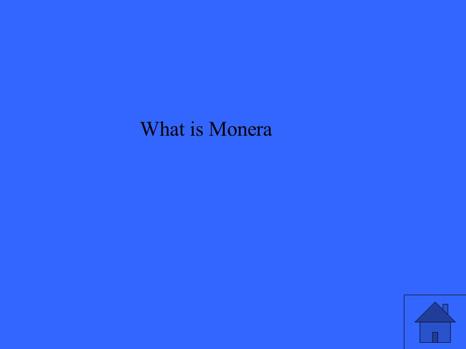 What is Monera