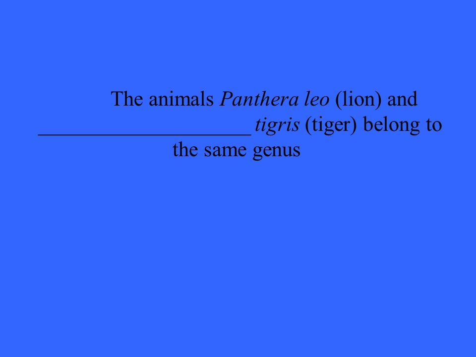The animals Panthera leo (lion) and ____________________ tigris (tiger) belong to the same genus