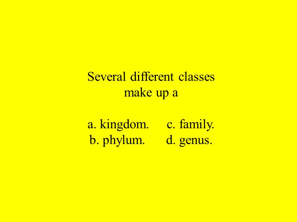 Several different classes make up a a. kingdom. c. family. b. phylum. d. genus.