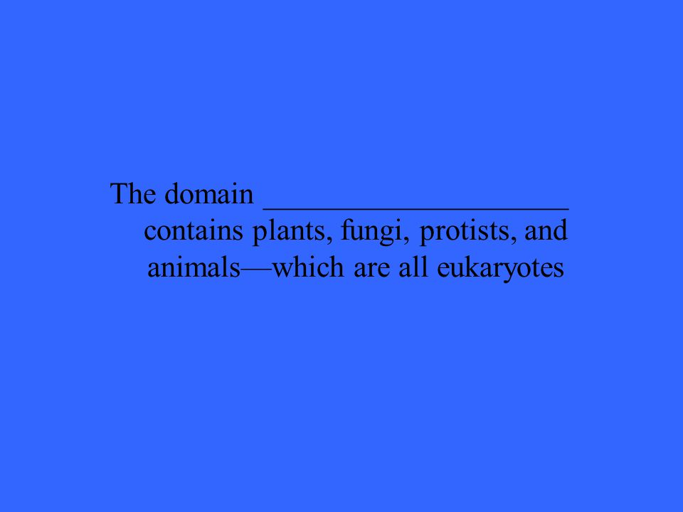 The domain ____________________ contains plants, fungi, protists, and animals—which are all eukaryotes