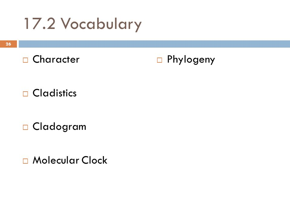 17.2 Vocabulary  Character  Cladistics  Cladogram  Molecular Clock  Phylogeny 26