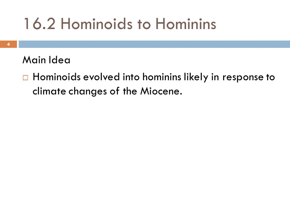 16.2 Hominoids to Hominins Main Idea  Hominoids evolved into hominins likely in response to climate changes of the Miocene.