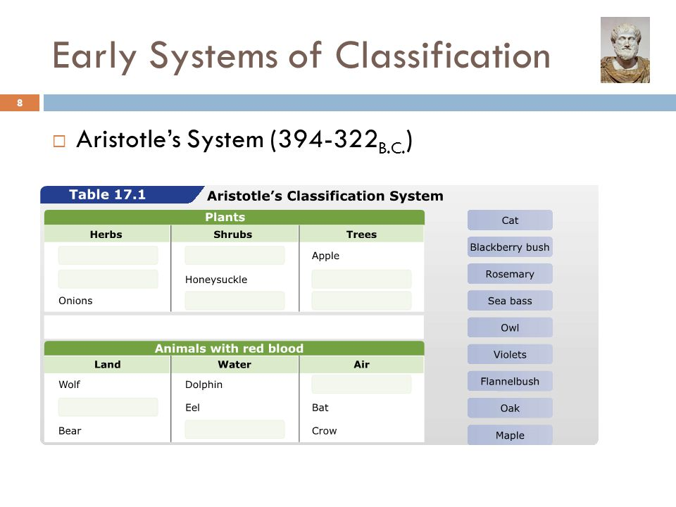 Early Systems of Classification  Aristotle's System ( B.C. ) 8