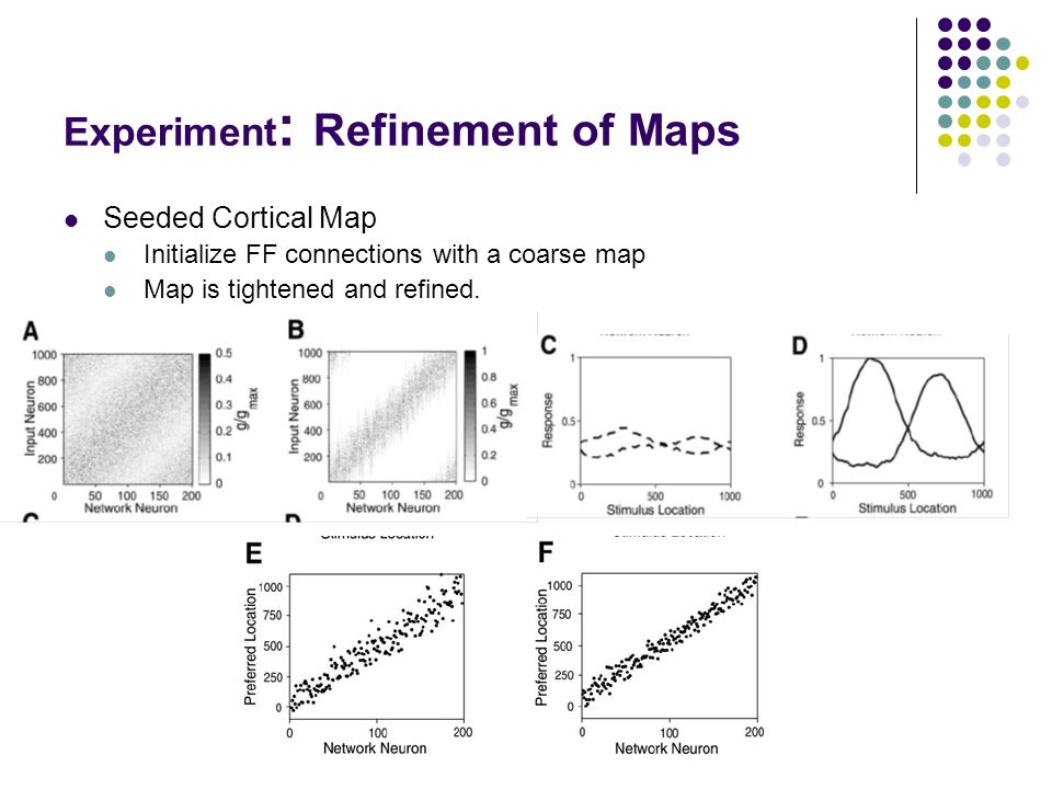 Experiment : Refinement of Maps Seeded Cortical Map Initialize FF connections with a coarse map Map is tightened and refined.