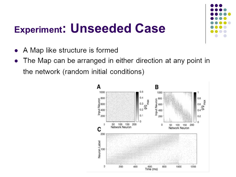 Experiment : Unseeded Case A Map like structure is formed The Map can be arranged in either direction at any point in the network (random initial conditions)