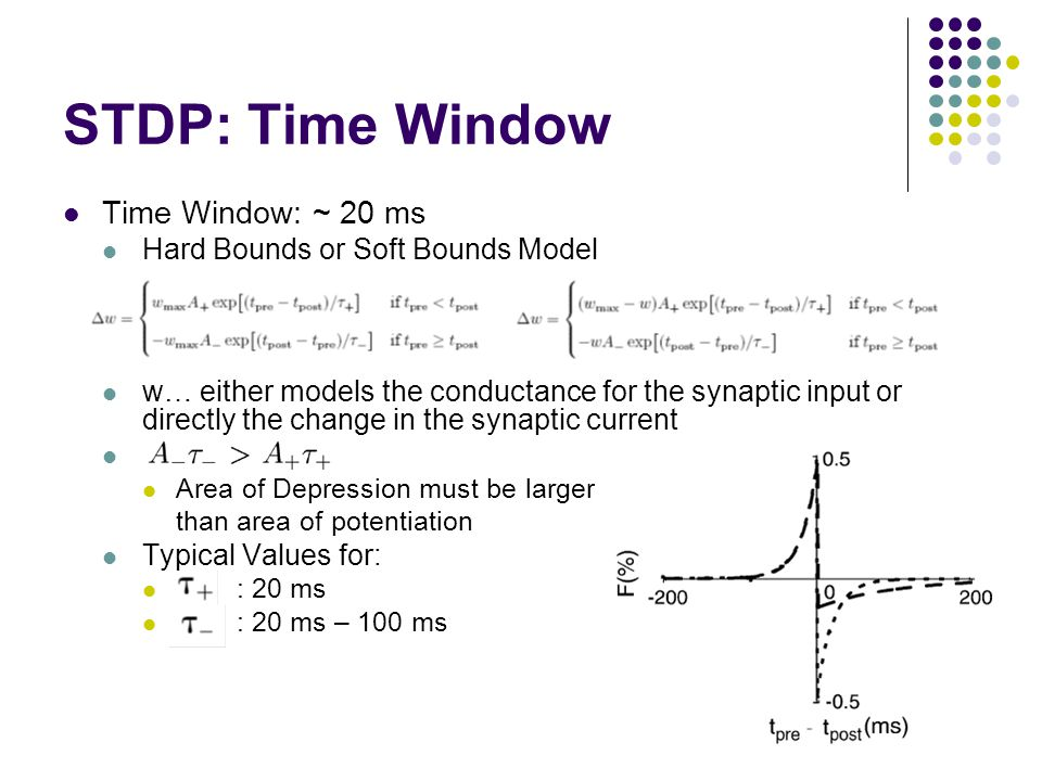 STDP: Time Window Time Window: ~ 20 ms Hard Bounds or Soft Bounds Model w… either models the conductance for the synaptic input or directly the change in the synaptic current Area of Depression must be larger than area of potentiation Typical Values for: : 20 ms : 20 ms – 100 ms