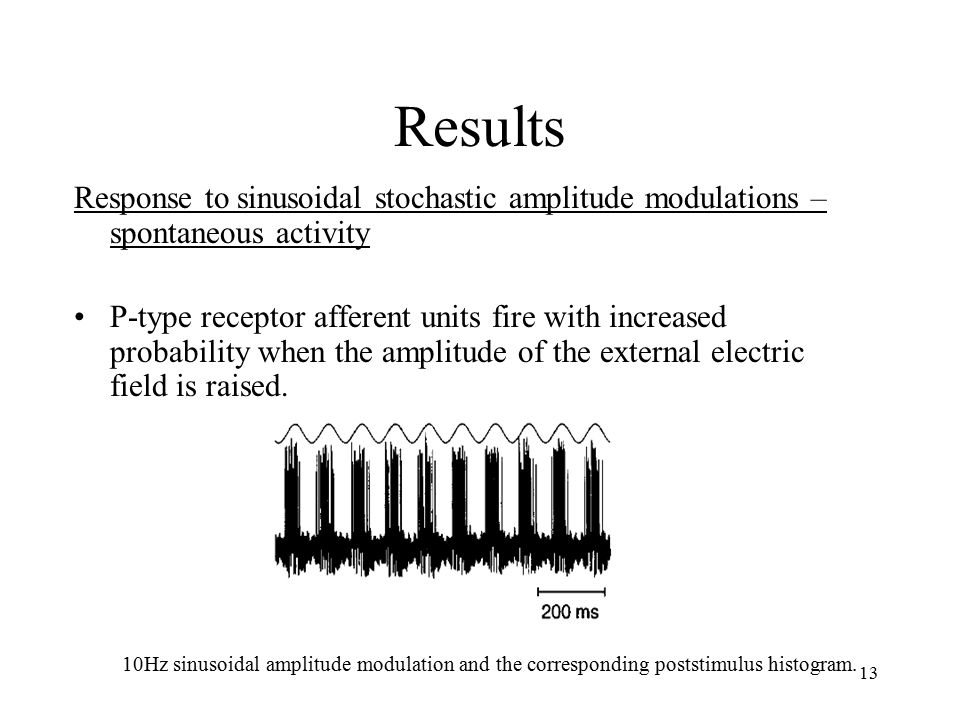 13 Results Response to sinusoidal stochastic amplitude modulations – spontaneous activity P-type receptor afferent units fire with increased probability when the amplitude of the external electric field is raised.