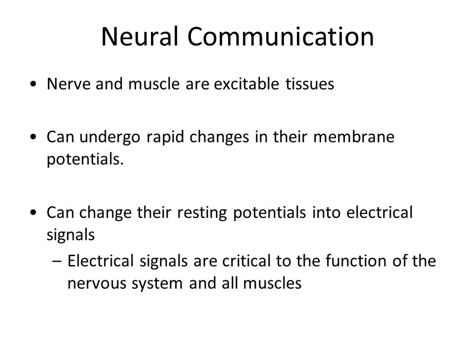Neural Communication Nerve and muscle are excitable tissues Can undergo rapid changes in their membrane potentials.