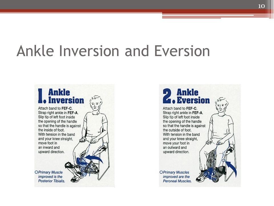 Ankle Inversion and Eversion 10