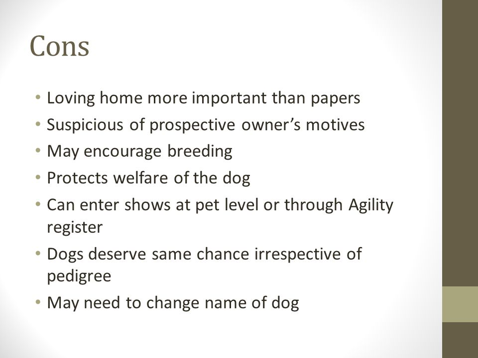 Registration documents and rescue dogs To give or not to give? - ppt