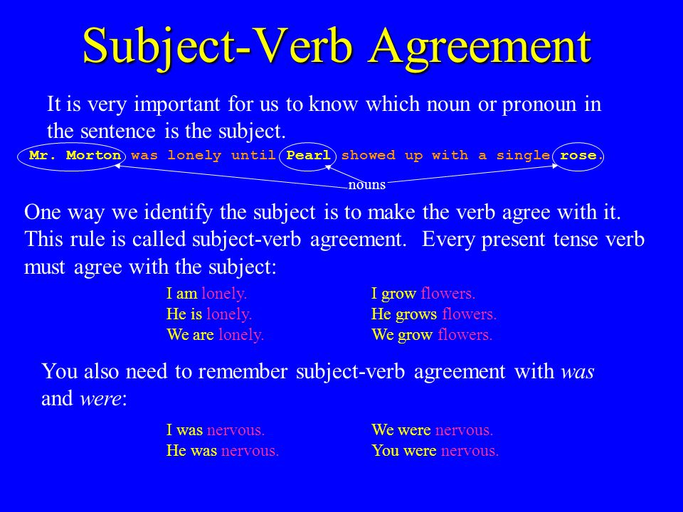 Parts Of A Sentence With Dr Erika Parts Of A Sentence Every